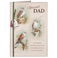 Dad Birthday Owl Card
